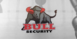 Bull Security