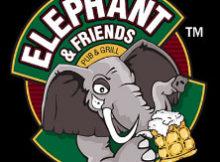 Elephant & Friends