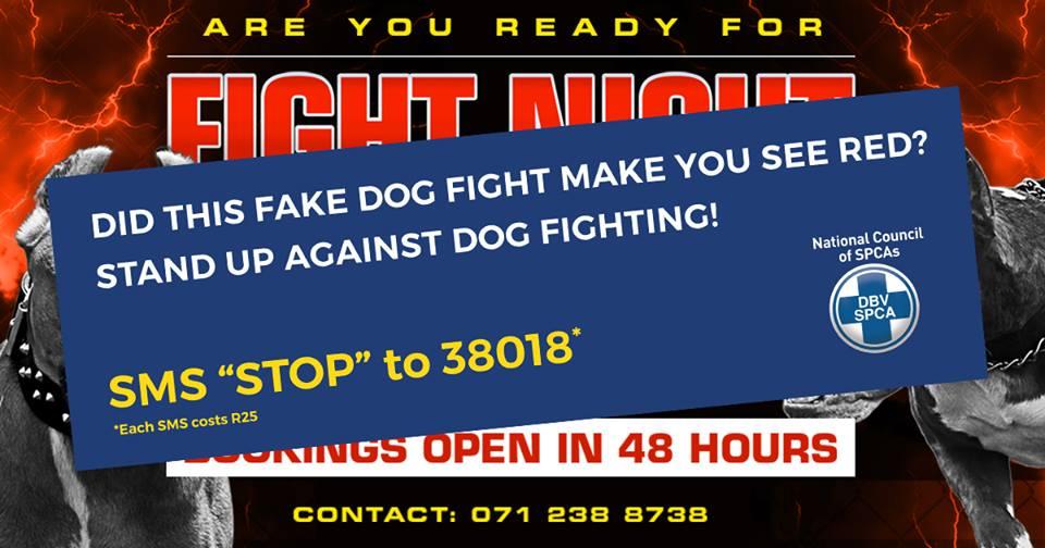 SPCA dog fighting ad